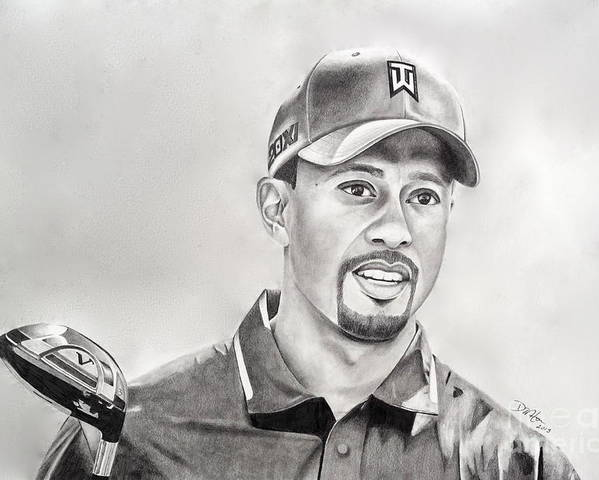 Tiger Woods Poster featuring the drawing Tiger Club by Devin Millington