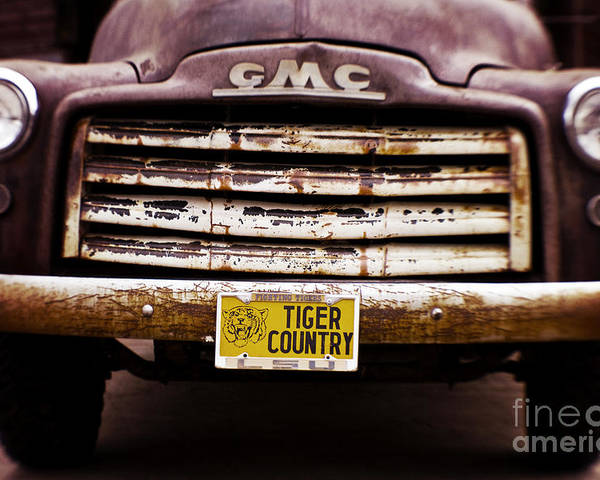 Lsu Poster featuring the photograph Tiger Country - Purple And Old by Scott Pellegrin