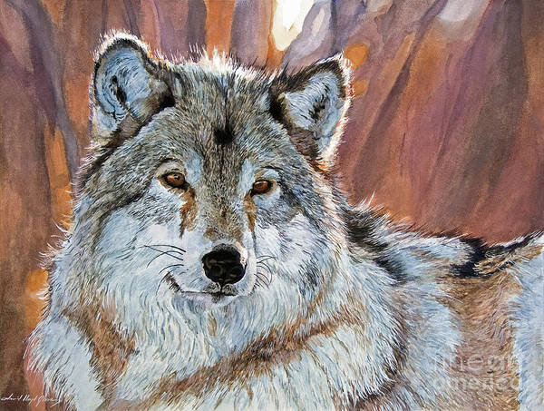 Wolf Poster featuring the painting Timber Wolf by David Lloyd Glover
