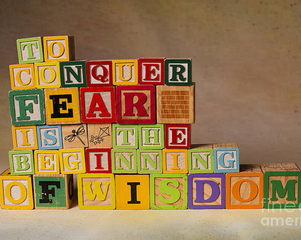 To Conquer Fear Is The Beginning Of Wisdom Poster featuring the photograph To Conquer Fear Is The Beginning Of Wisdom by Art Whitton