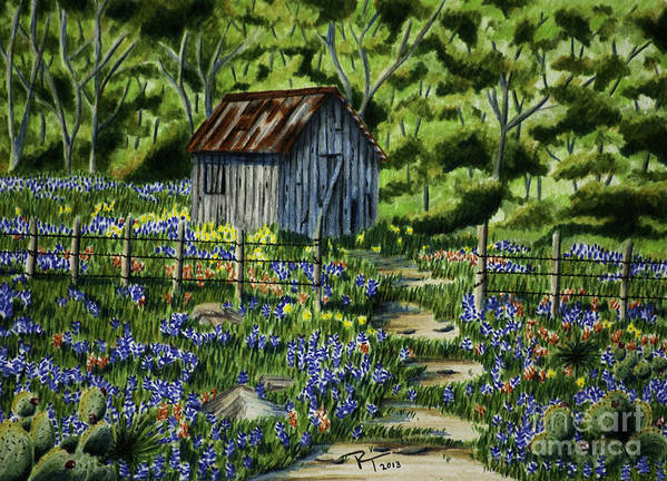 Landscape Poster featuring the drawing Tool Shed by Robert Thornton