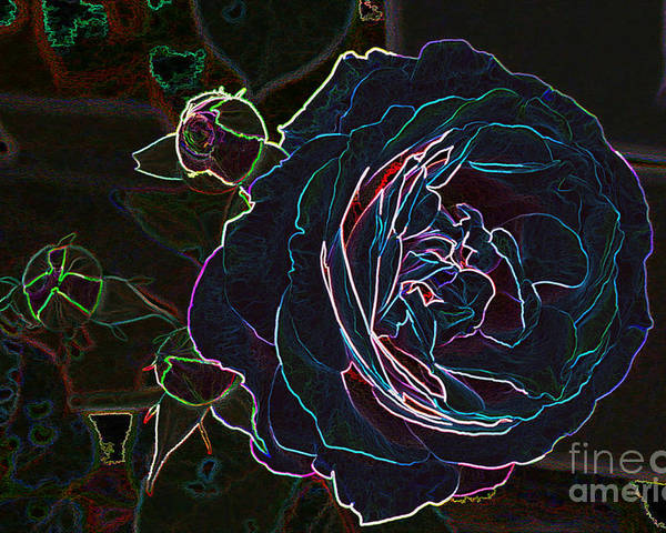 Electric Flowers Poster featuring the photograph Transparent Rose by Mike Flake