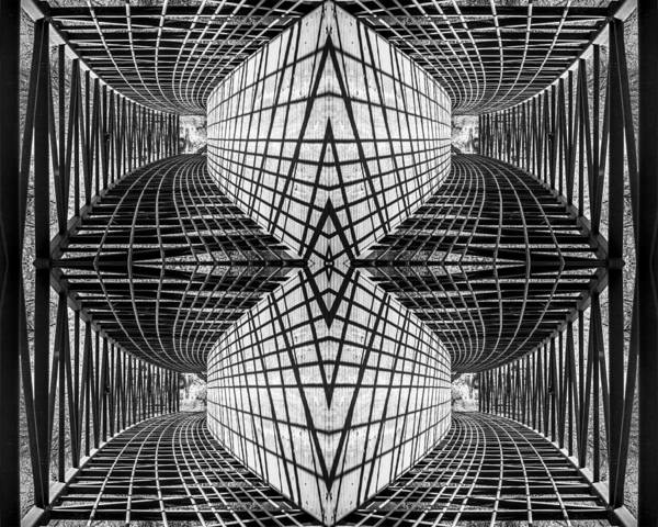 Abstract Poster featuring the photograph Trapped by Richard ONeil