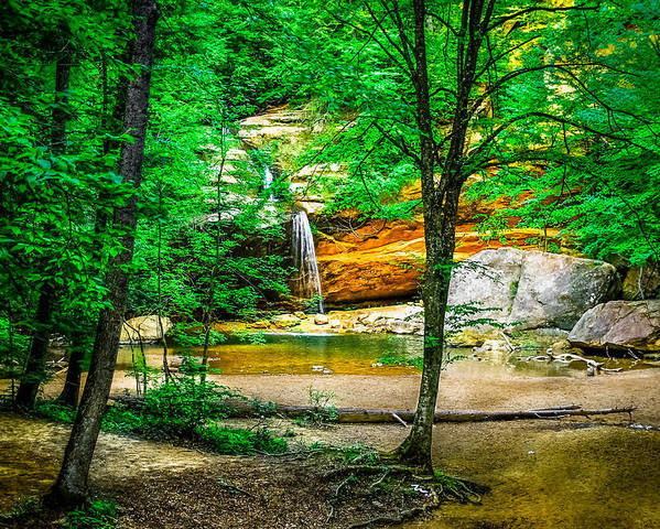 Hocking Hills Poster featuring the photograph Tree Roots by Optical Playground By MP Ray