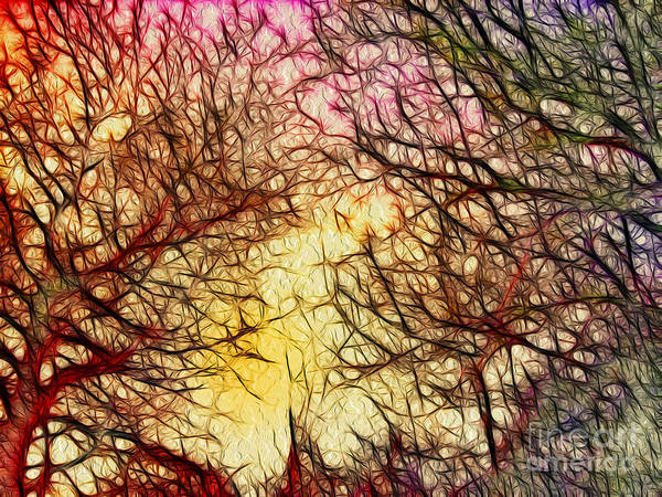 Digital Art Poster featuring the digital art Trees Of The Four Seasons by Kaye Menner