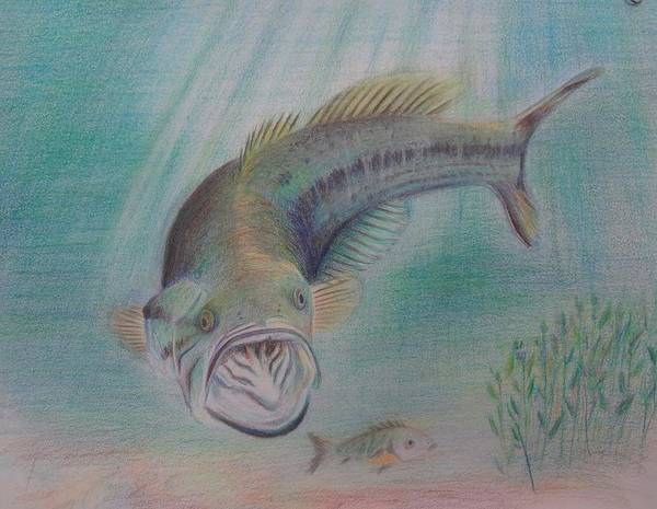 Bigmouth Bass Fish Lake Nature Underwater Poster featuring the drawing Trolling For Lunch by Peggy Clark