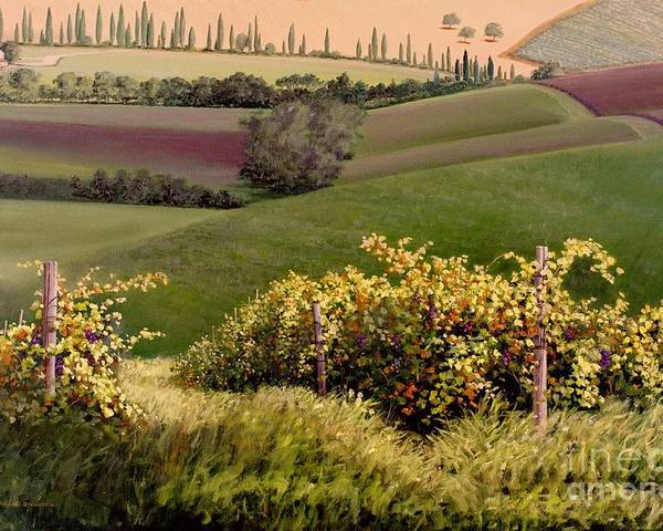 Grapevine Poster featuring the painting Tuscan Hills by Michael Swanson