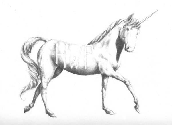 Unicorn Poster featuring the drawing Unicorn by Alexander M Petersen