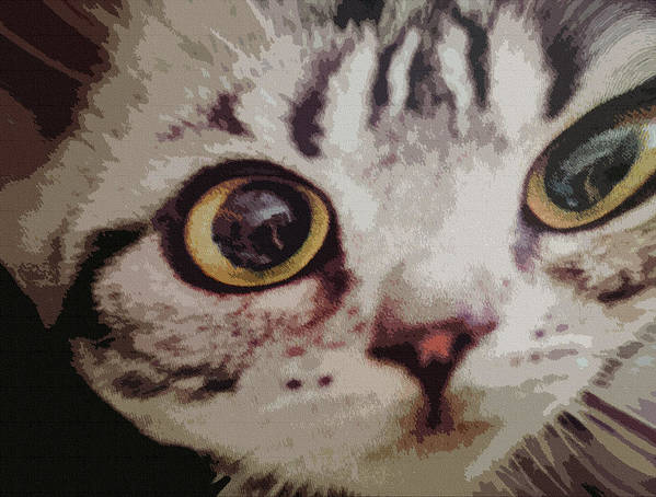 Cat Eyes Poster featuring the digital art Up Close by Dennis Buckman