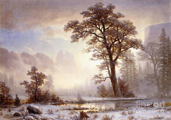 Albert Bierstadt Poster featuring the painting Valley Of The Yosemite Snow Fall by Albert Bierstadt