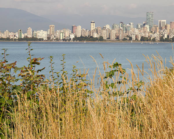 Vancouver Poster featuring the photograph Vancouver Bc Downtown From Hasting Mills Park by Jit Lim