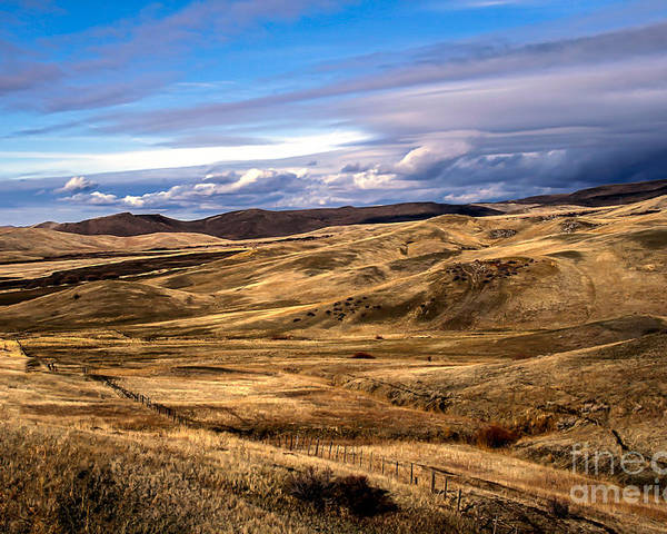 Landsacape Poster featuring the photograph Vast View Of The Rolling Hills by Robert Bales