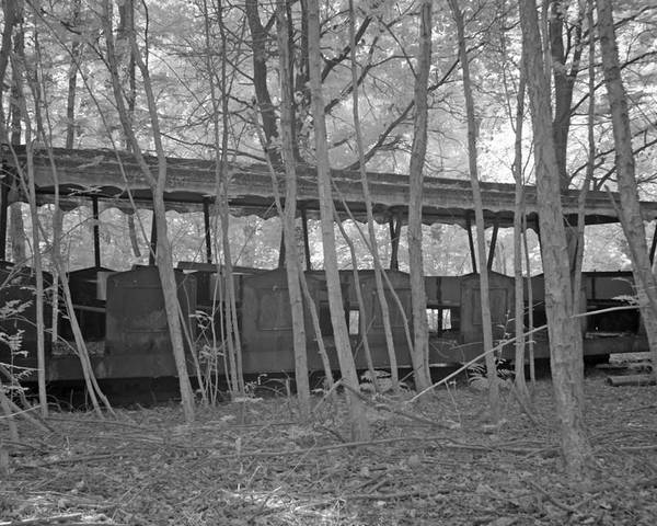 Bomen Poster featuring the photograph Wagons In The Forest In Infrared Light In Netherlands by Ronald Jansen