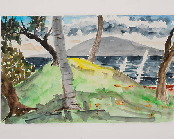 Hawaii Watercolor Poster featuring the drawing Wailea Beach Maui by Fred Truitt