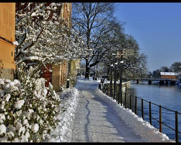 Walk Water Winter View Beatiful Snow Ice Sweden Footpath Trees Ligth Photography Poster featuring the photograph Walk At The Water by Stefan Pettersson