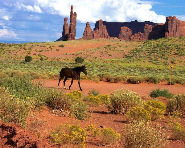 Monument Valley Poster featuring the photograph Walking Down The Road by Pamela Schreckengost