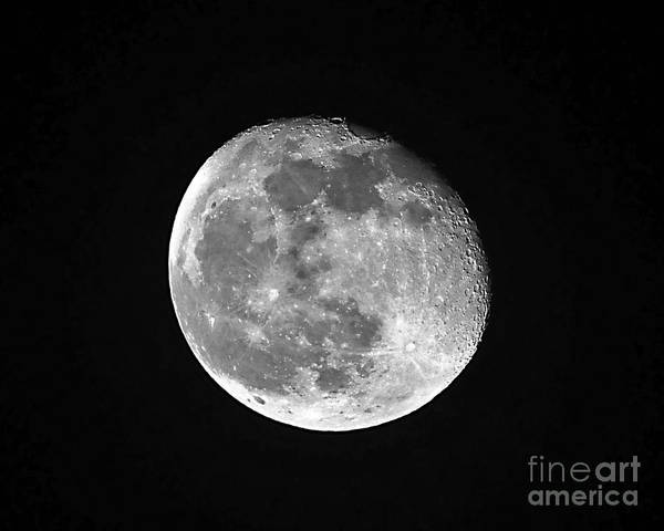 Moon Poster featuring the photograph Waning Pink Moon by Al Powell Photography USA