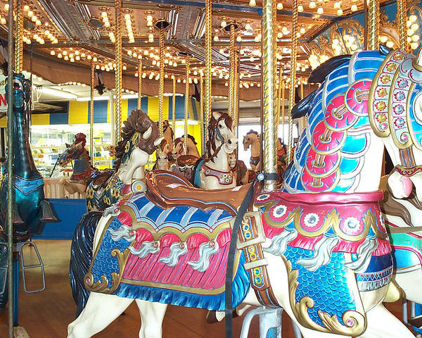 Carousel Horse Poster featuring the photograph Warrior by Barbara McDevitt