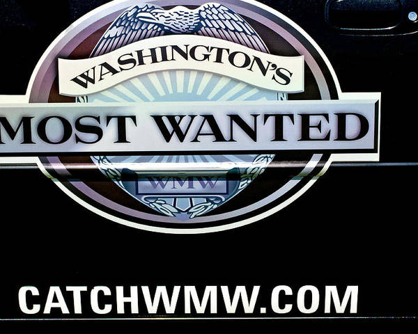 Q13 Poster featuring the photograph Washington's Most Wanted by Tikvah's Hope