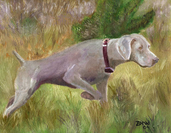 Weimaraner Dog Painting Poster featuring the painting Weimaraner Point by Mary Jo Zorad