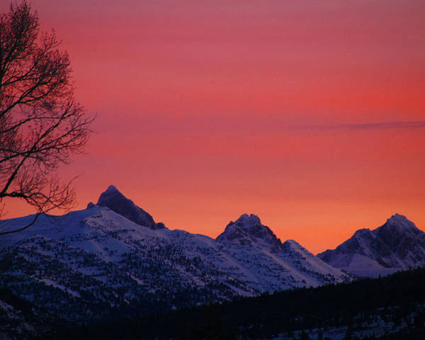 West Side Teton Sunrise Poster featuring the photograph West Side Teton Sunrise by Raymond Salani III