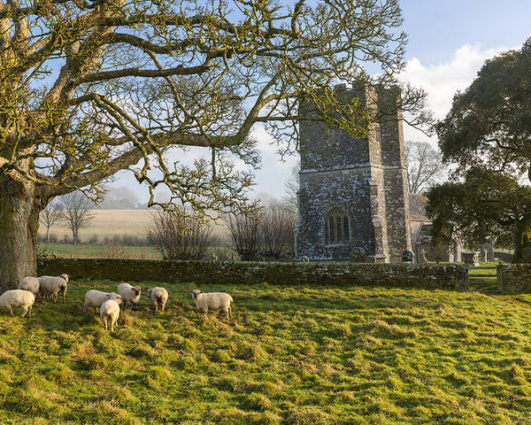 12th Poster featuring the photograph Whitcombe Church by Sebastian Wasek