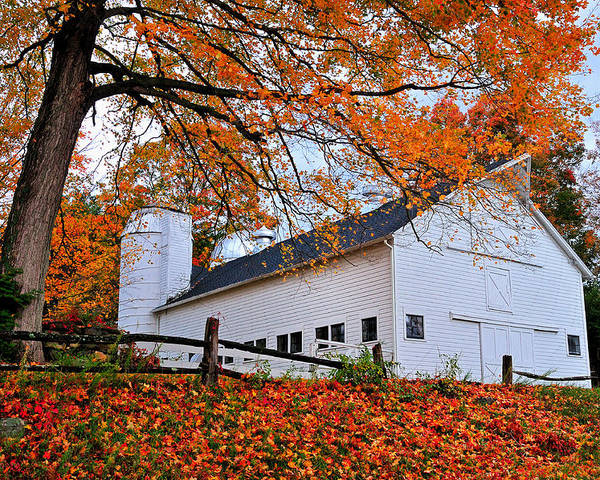 Barn Poster featuring the photograph White Barn And Silo by Thomas Schoeller