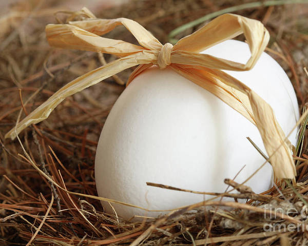 Beautiful Poster featuring the photograph White Egg With Bow On Straw by Sandra Cunningham