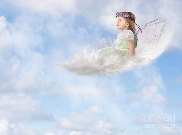 Feather Poster featuring the photograph White Feather Dream by Cindy Singleton