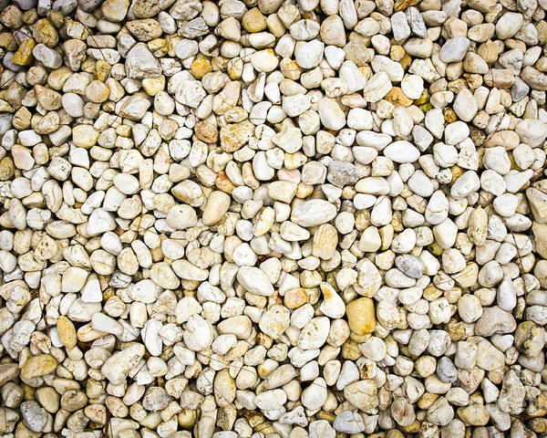 Abstract Poster featuring the photograph White Pebbles by Tim Hester