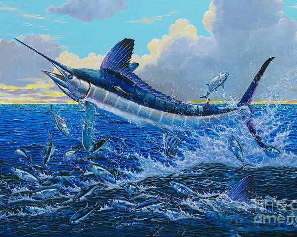 White Marlin Poster featuring the painting White Surprise Off0050 by Carey Chen