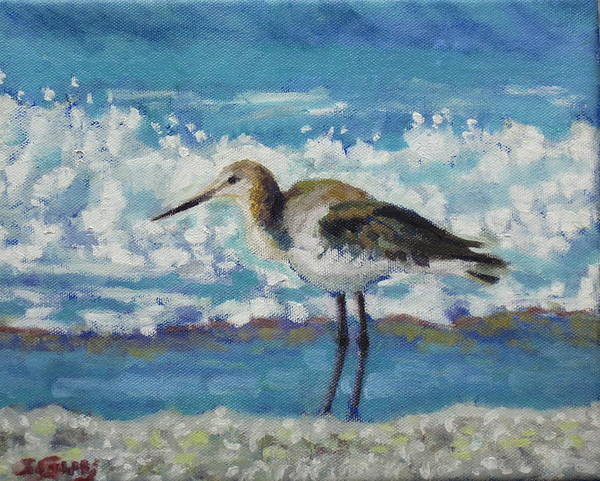 Wildlife Poster featuring the painting Willet by Sharon Guy