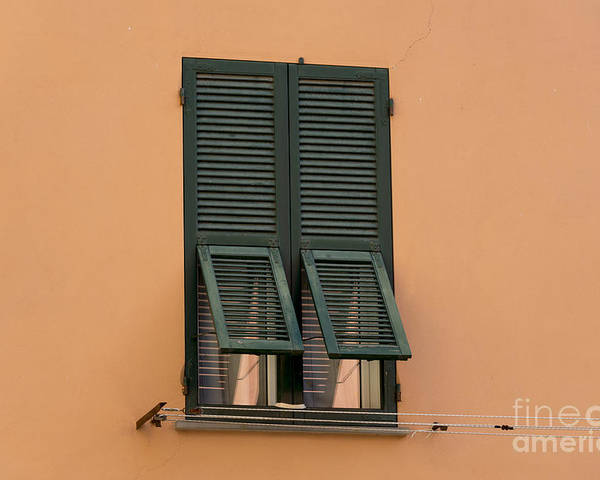 Window Poster featuring the photograph Window With Shutter by Mats Silvan