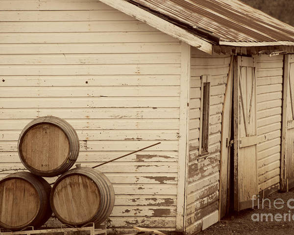 Architecture And Building Poster featuring the photograph Wine Barrels And Rustic White Barn by Juli Scalzi
