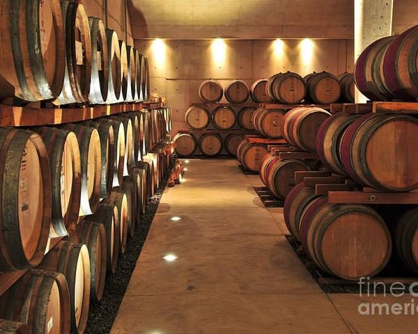 Barrels Poster featuring the photograph Wine Barrels by Elena Elisseeva