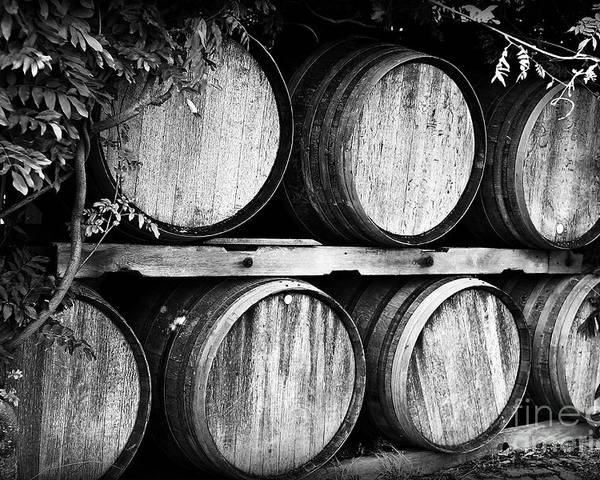 Wine Poster featuring the photograph Wine Barrels by Scott Pellegrin