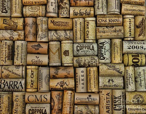 Paul Ward Poster featuring the photograph Wine Corks After The Wine Tasting by Paul Ward