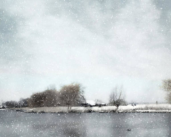 Winter Poster featuring the photograph Winter by Annie Snel