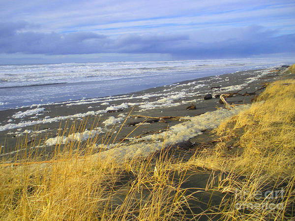 Winter Poster featuring the photograph Winter Beach by Jeanette French
