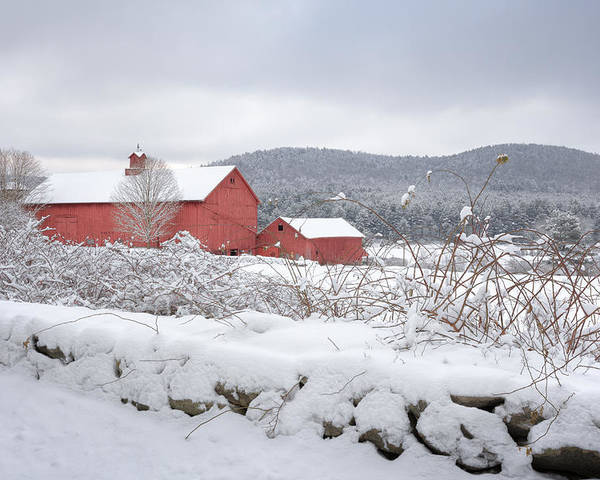 Old Red Barn Poster featuring the photograph Winter In Connecticut by Bill Wakeley