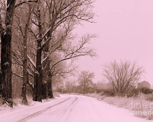 Winter Poster featuring the photograph Winter Pink by Carol Groenen