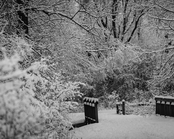 B&w Poster featuring the photograph Winter Wonderland by Sebastian Musial