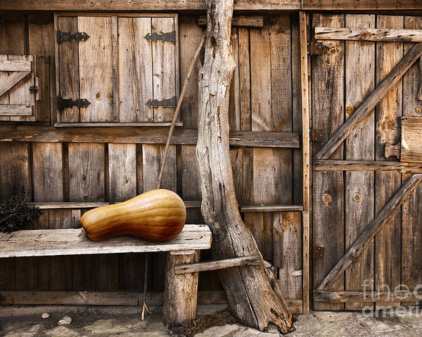 Ancient Poster featuring the photograph Wooden Shack by Carlos Caetano