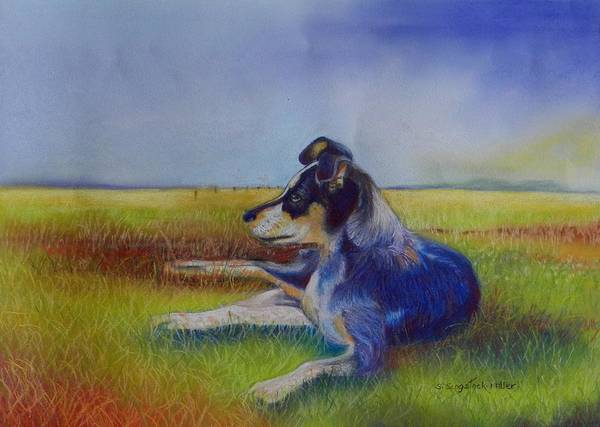 Pastel Painting Poster featuring the pastel Working Man's Dog by Sandra Sengstock-Miller