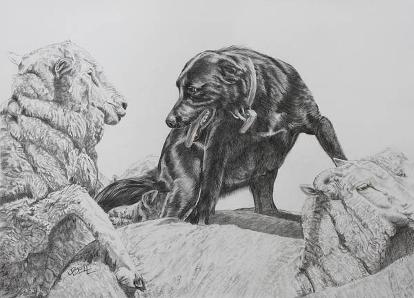 Working Dog Poster featuring the drawing Working Mother II by Leonie Bell