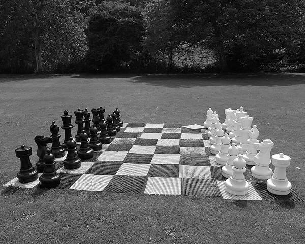 Black And White Poster featuring the photograph Your Move 1 by Denise Mazzocco