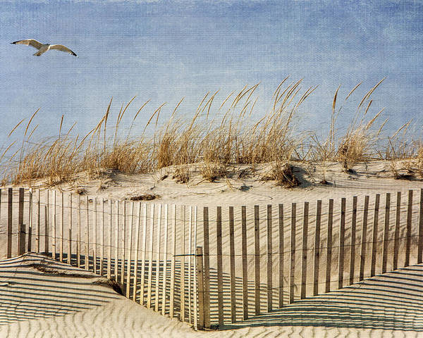 Beach Poster featuring the photograph Zig Zag Beach by Cathy Kovarik