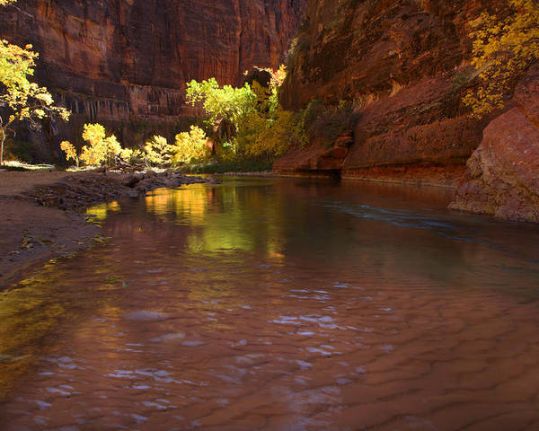 Zion Poster featuring the photograph Zion Canyon Of The Virgin River by Susan Rovira