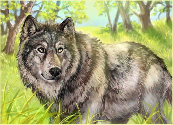 Wolf Poster featuring the painting Wolf Summer by Paul Van Scott
