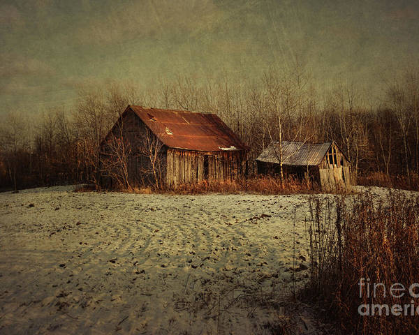 Abandon Poster featuring the photograph Abandoned Barn After The First Snow by Sandra Cunningham